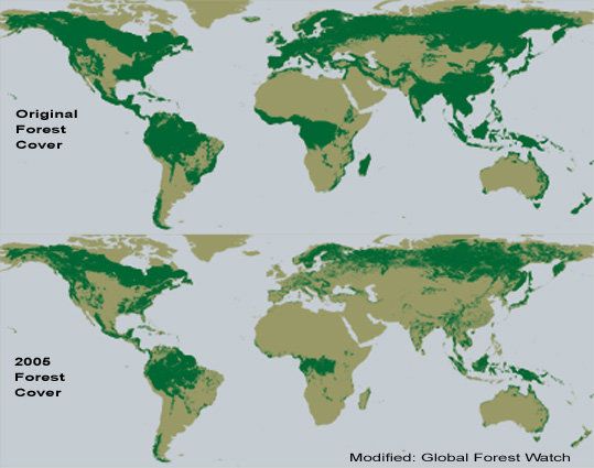 ForestCover